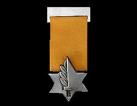 Decorations & Medals