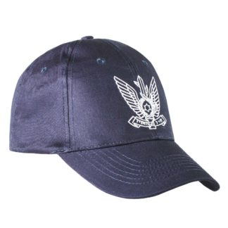 Israel-Air-Force-emblem-Embroidered-Ball-Cap